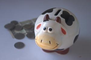 piggy-bank-390528_640